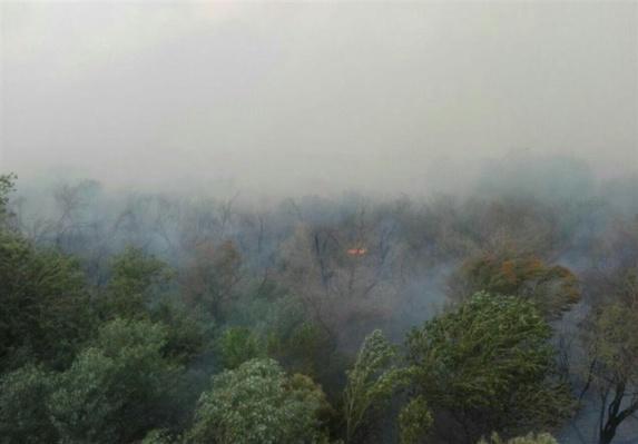 خاکستر شدن پارک ملی کرخه واقع در شمال غربی احواز