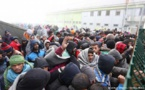 بیش از بیست وسه میلیون نفر در سطح جهان برای مهاجرت برنامهای مشخص دارند