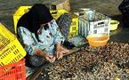 استثمار کارگران زن در کارگاه های کوچک ایران