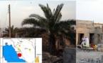 زلزله در استان بوشهر دها نفر کشته و صدها مجروح برجای گذاشت