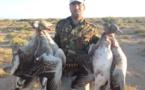 وجود دو میلیون اسلحه شکاری تهدیدی جدی علیه حیات وحش ایران
