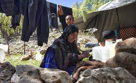 استان ایلام پایتخت خودکشی در ایران است