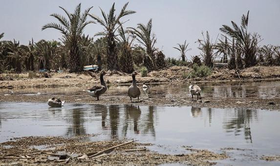 نابودی بزرگترین تالاب در قاره آسیا