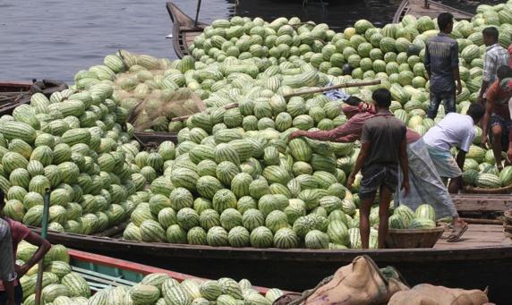 هندوانههای صادراتی ایران به کشورهای حوزه خلیج بازگشت داده شد