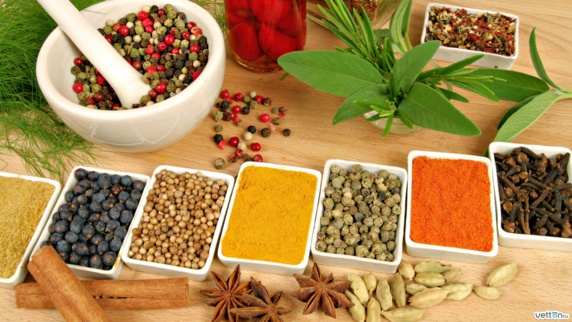 گیاهان موثر برای کاهش فشار خون