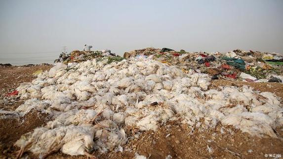 کوهی از زباله در قسمتی از شهر اهواز