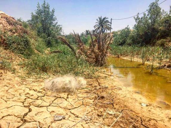 فرياد خشک و چرکین فلاحیه وقتی رودهای بی آب طغیان میکنند /يوسف السرخي