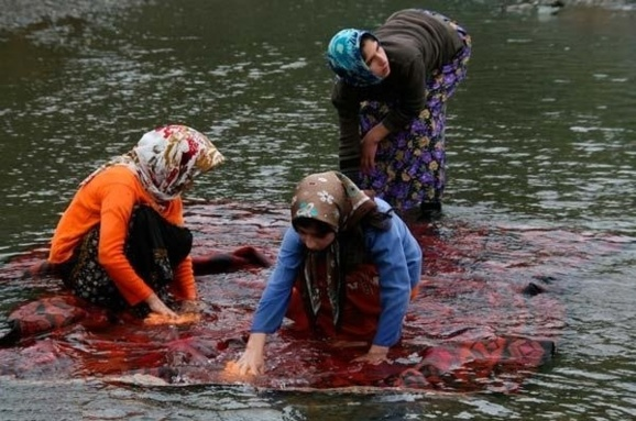 عکس زنان تالشی در حال قالیشوئی