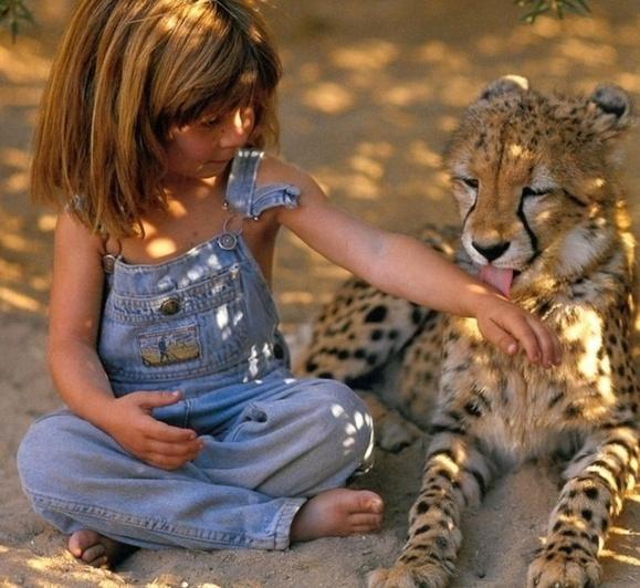 همزيستي دخترك شجاع با حيوانات وحشى
