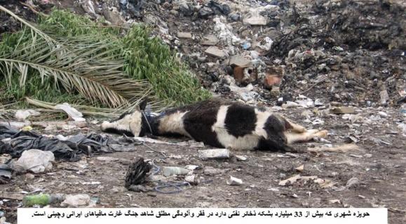 حویزه با 33 میلیارد بشکه نفت در فقر وآلودگی مطلق شاهد جنگ غارت مافیاهای ایرانی وچینی است