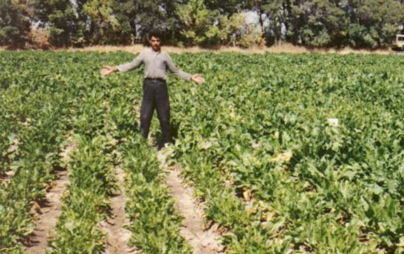 کشاورزان اندیمشکی نیز برای نجات مزارع خود به فاضلاب پناه بردند