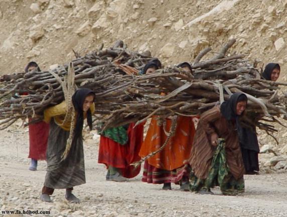 زنان روستایی، فعالان گمنام اقتصادی