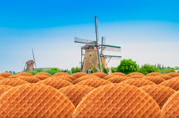 هلندی ها چه خوش خوراک اند...!