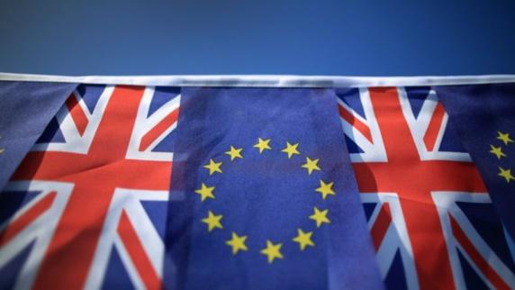 بریتانیا: شرکت گسترده مردم در همهپرسی ماندن در اروپا