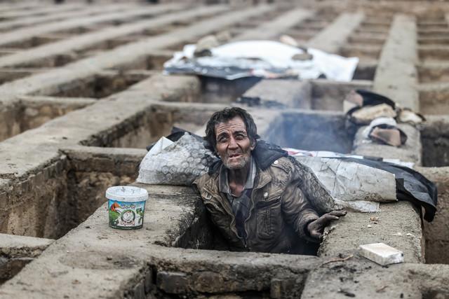 معاون وزیر بهداشت ایران از جمعآوری بیش از ۷۰۰۰ گورخواب در یک روز اعتراف کرد