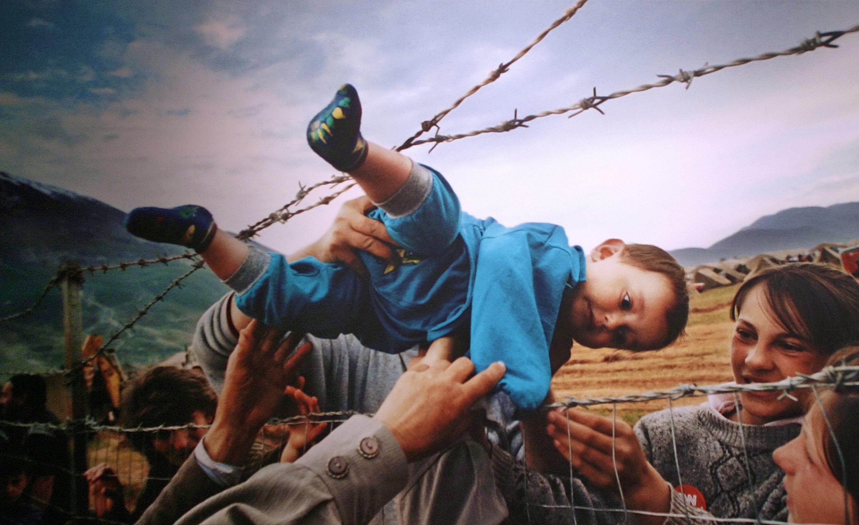 آیا ادعاهای مطرح شده درباره پناهجویان صحت دارد؟