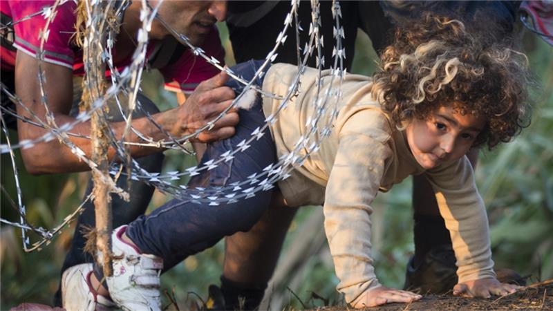 گزارش سازمان دیدهبان حقوق بشر از حملات سیستماتیک به پناهجویان