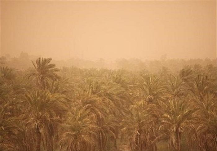 کشاورزی خوزستان به خاک سرخ نشست