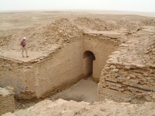 شرکتهای ایرانی در عراق زمین کشاورزی اجاره کردهاند