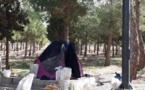 ویدیوی كربلاي ظلم و فقر و فساد در ايران است نه در عراق