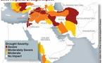 نگاهی متفاوت به ریشه های بهار عربی