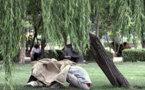 تصادف و موادمخد در صدر علل مرگ غیرطبیعی ایرانیان